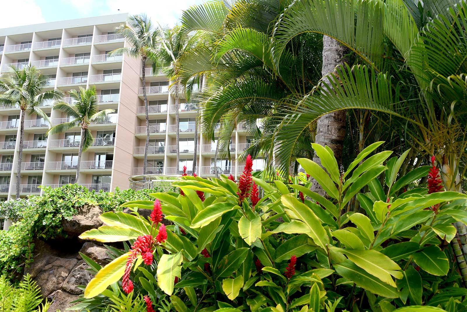 Marriott-Kauai-Beach-Club-Resort-27