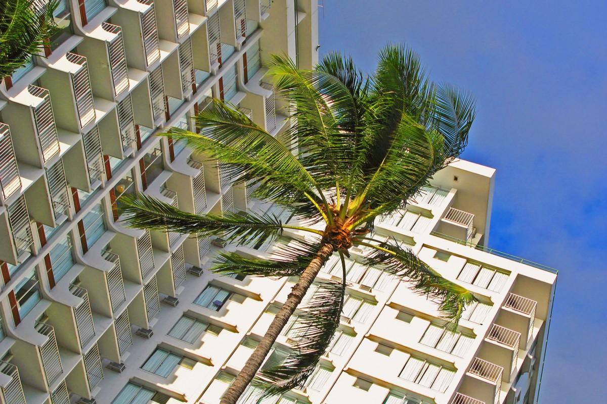 Hawaii timeshare growth and development