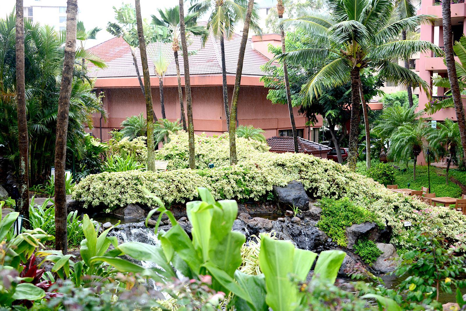 Kahana Falls Maui timeshare resales