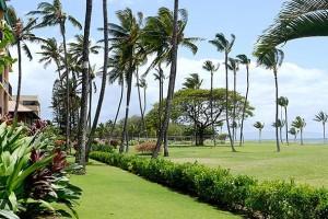 Maui Schooner timeshare resales