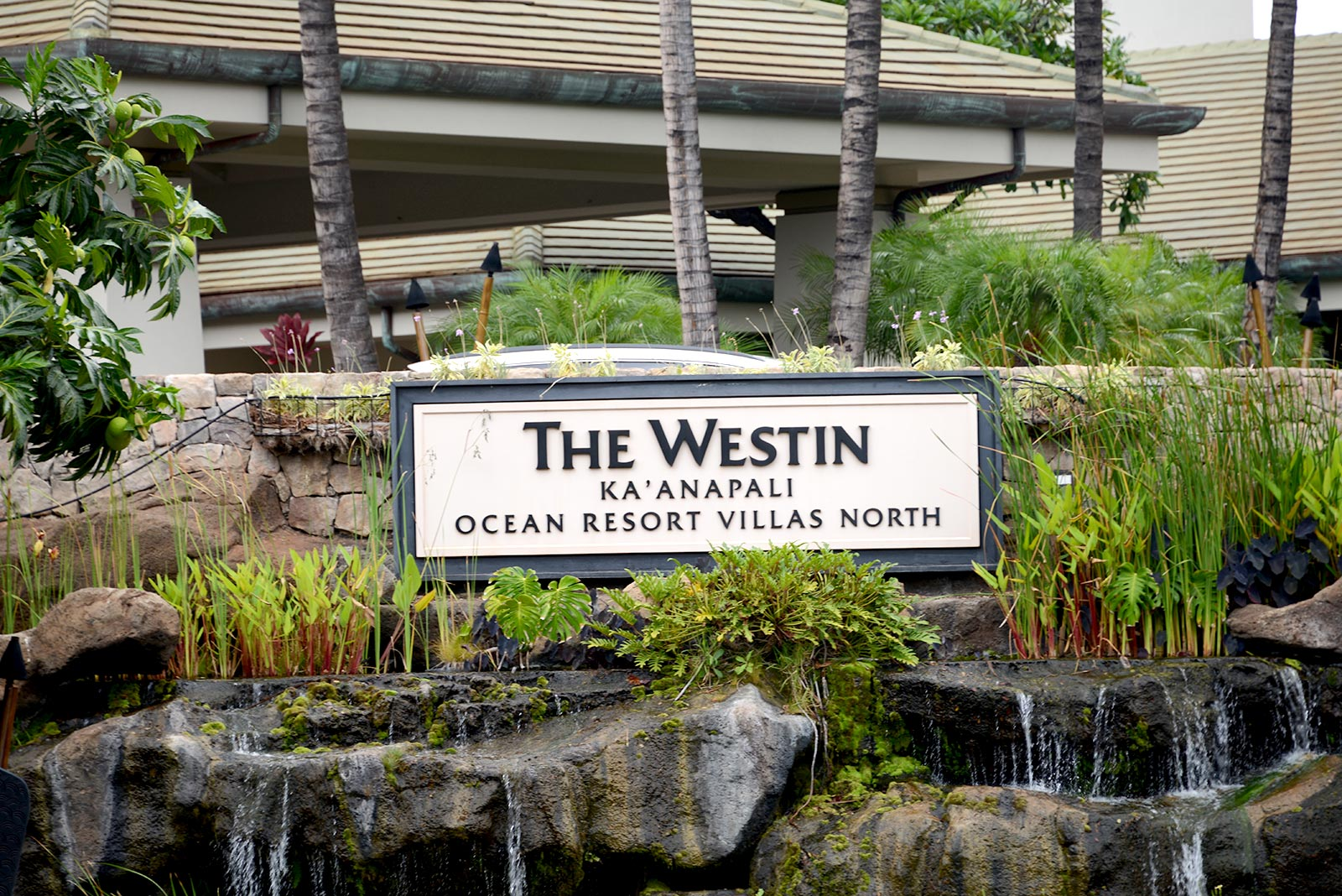 Westin Kanaapali Ocean Resort Villas North timeshare resales
