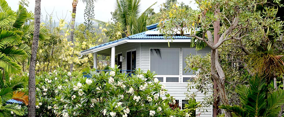 Mauna Loa Village timeshare resales