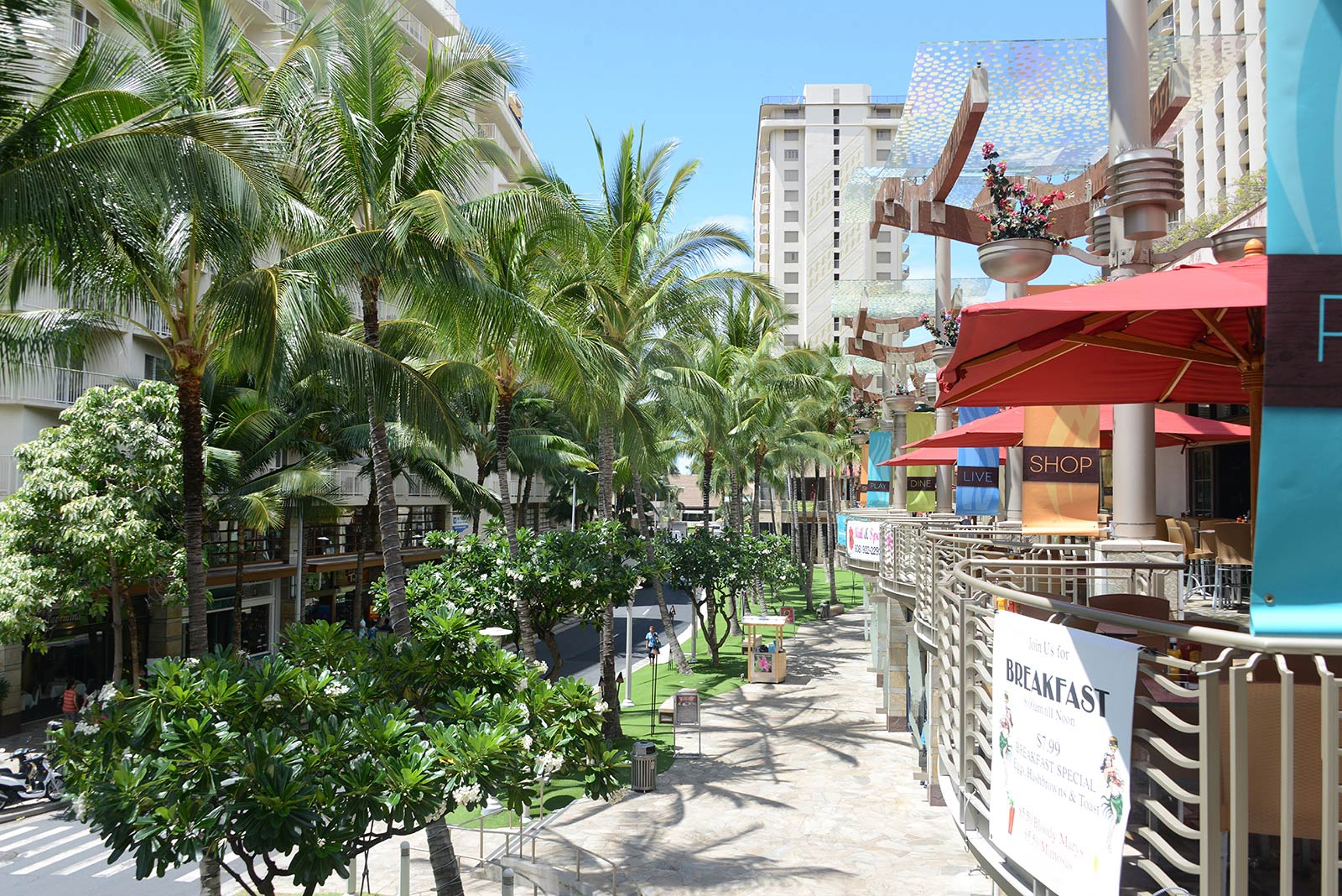 Wyndham Waikiki Beach Walk Timeshare Resales. Lubbock Attorney General Car Title Cash Loans. Colleges In Vancouver Bc Shogun Huntsville Al. Credit Card With Cosigner Custom Glass Awards. Army Reserves Education Benefits. Office Of Foreign Assets Control Blocked Persons List. Girls With Big Ass Getting Fucked. Dataware Housing Concepts Firewall Web Filter. The Coolest Thing On The Internet